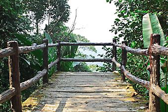 Терраса в джунглях Таиланда (Каталог номер: 15092)