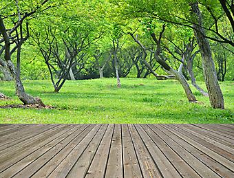 Веранда с видом на весенний сад (Каталог номер: 15098)