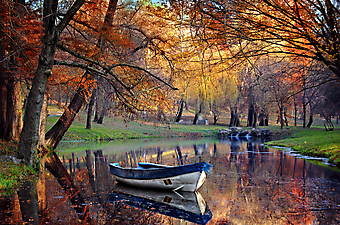 Красочная осень. (Код изображения: 18005)