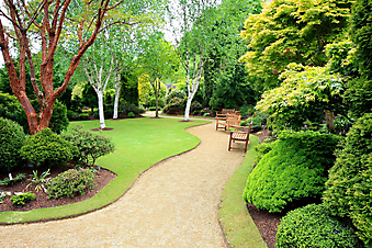 Весенний сад. (Код изображения: 18019)