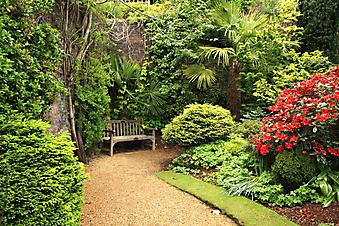 Весенний сад. (Код изображения: 18020)