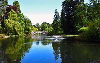 Мостик через пруд с фонтаном (Каталог номер: 18036)