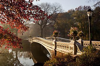 Красивый мостик в осеннем парке (Каталог номер: 18041)