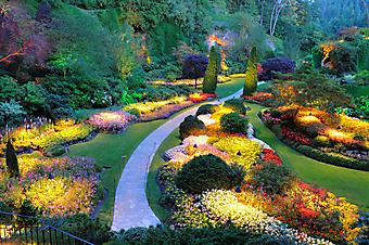 Яркий вечерний сад (Каталог номер: 18046)