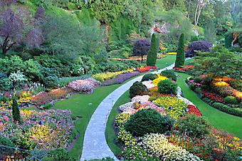 Дорожка через красочный сад (Каталог номер: 18047)