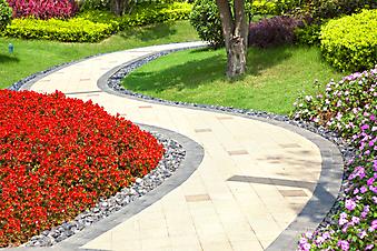 Тропинка в цветущем саду (Каталог номер: 18049)