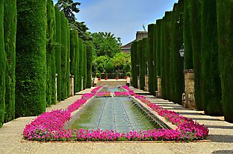 Сад в Кордовском Алькасаре, Испания (Каталог номер: 18064)