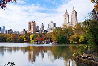 Центральный парк, Нью-Йорк (Каталог номер: 18073)