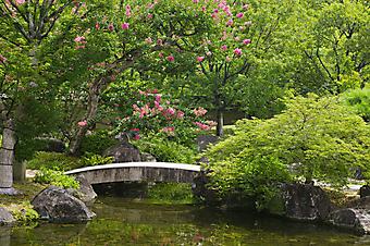 Мост в японском саду (Каталог номер: 18076)