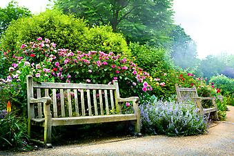 Скамейки в английском саду (Каталог номер: 18078)