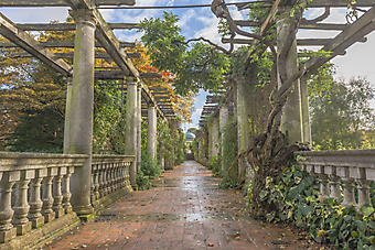 Пергола в осеннем парке (Каталог номер: 18084)