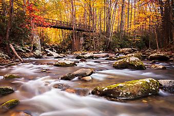 Мост в осеннем лесу (Каталог номер: 18104)