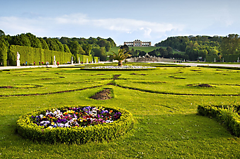 Сад в Шёнбрунне, Вена (Каталог номер: 18105)