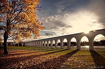 Осень в Новгородском парке (Каталог номер: 18107)