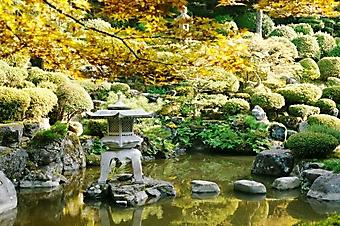 Мост из камней в японском саду (Каталог номер: 18128)