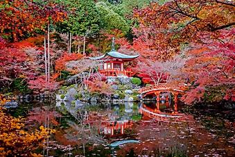 Деревья с красной листвой у храма (Каталог номер: 18136)