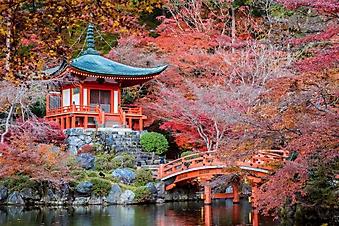 Японский дзен сад с черными камнями (Каталог номер: 18143)