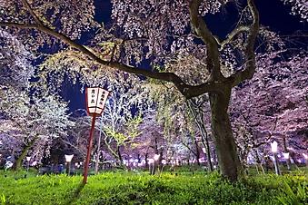 Фонари в парке Киото (Каталог номер: 18149)