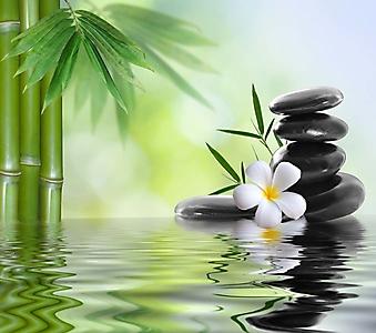 Бамбук и камни на воде (Каталог номер: 22048)