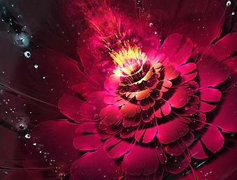 Красный фон из яркого цветка (Каталог номер: 22052)