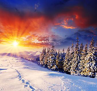 Красивый зимний закат. (Код изображения: 04038)