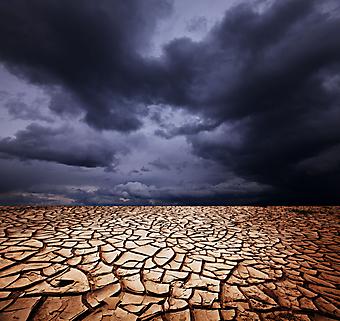 Засуха. (Код изображения: 04039)