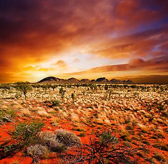 Закат в пустыне. (Код изображения: 04045)