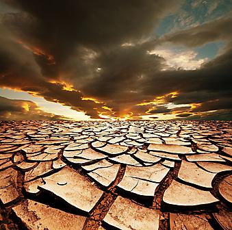 Засуха. (Код изображения: 04049)