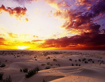 Оранжевый закат над пустыней (Каталог номер: 04092)