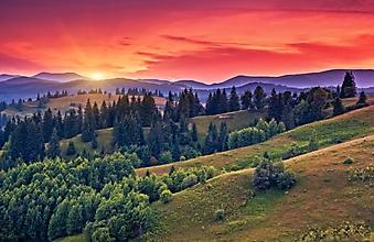 Оранжевый вечер в горах (Каталог номер: 04103)