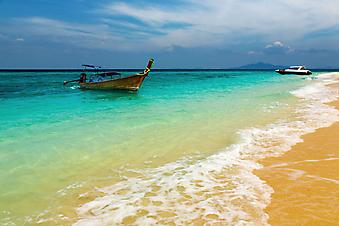 Тропический пляж. (Код изображения: 05017)