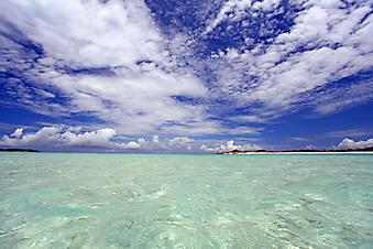 Голубая вода. (Код изображения: 05021)