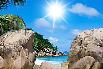 Солнечный пляж. (Код изображения: 05024)