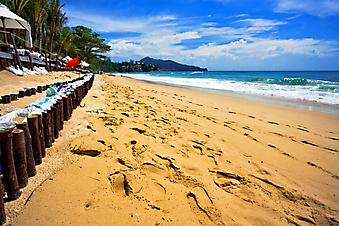 Тропический пляж. (Код изображения: 05031)