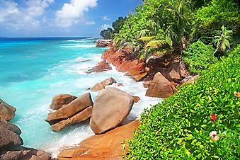 Потрясающий пляж. (Код изображения: 05033)