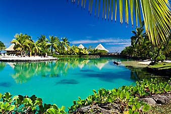 Тропический курорт. (Код изображения: 05045)