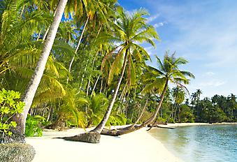 Красивый пляж. (Код изображения: 05053)