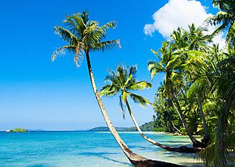 Красивый пляж. (Код изображения: 05057)