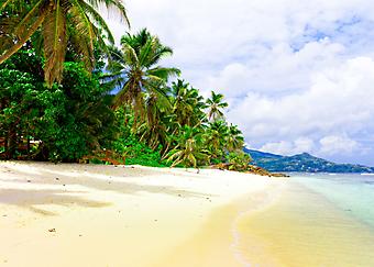 Панорама берега. (Код изображения: 05059)