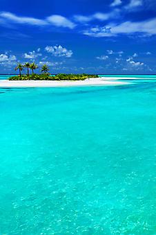 Остров с кокосовыми пальмами. (Код изображения: 05092)