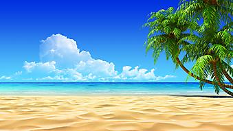 Дикий пляж с видом на море. (Код изображения: 05095)