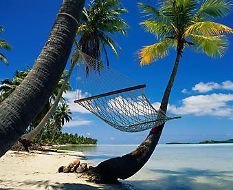 Отдых в раю. (Каталог номер: 05097)