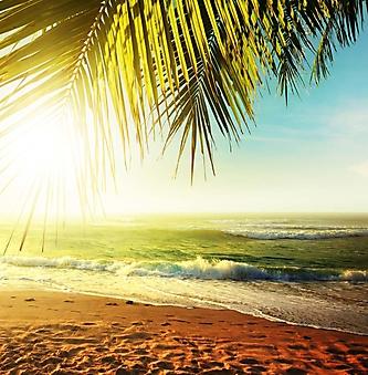 Солнце над тропическим пляжем (Каталог номер: 05138)