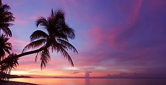 Красивый закат над тропическим пляжем (Каталог номер: 05140)