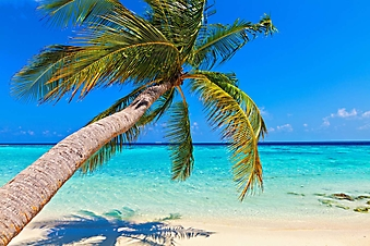 Пляж на острове Виламендхоо, Мальдивы (Каталог номер: 05143)