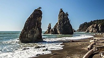 Каменные столбы у пляжа (Каталог номер: 05150)