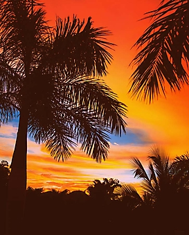 Пальмы на пляже Коста-Рики (Каталог номер: 05158)