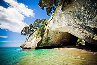 Пещера у моря, Новая Зеландия (Каталог номер: 05161)