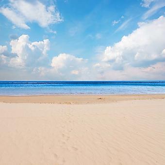Отлив на солнечном пляже (Каталог номер: 05176)
